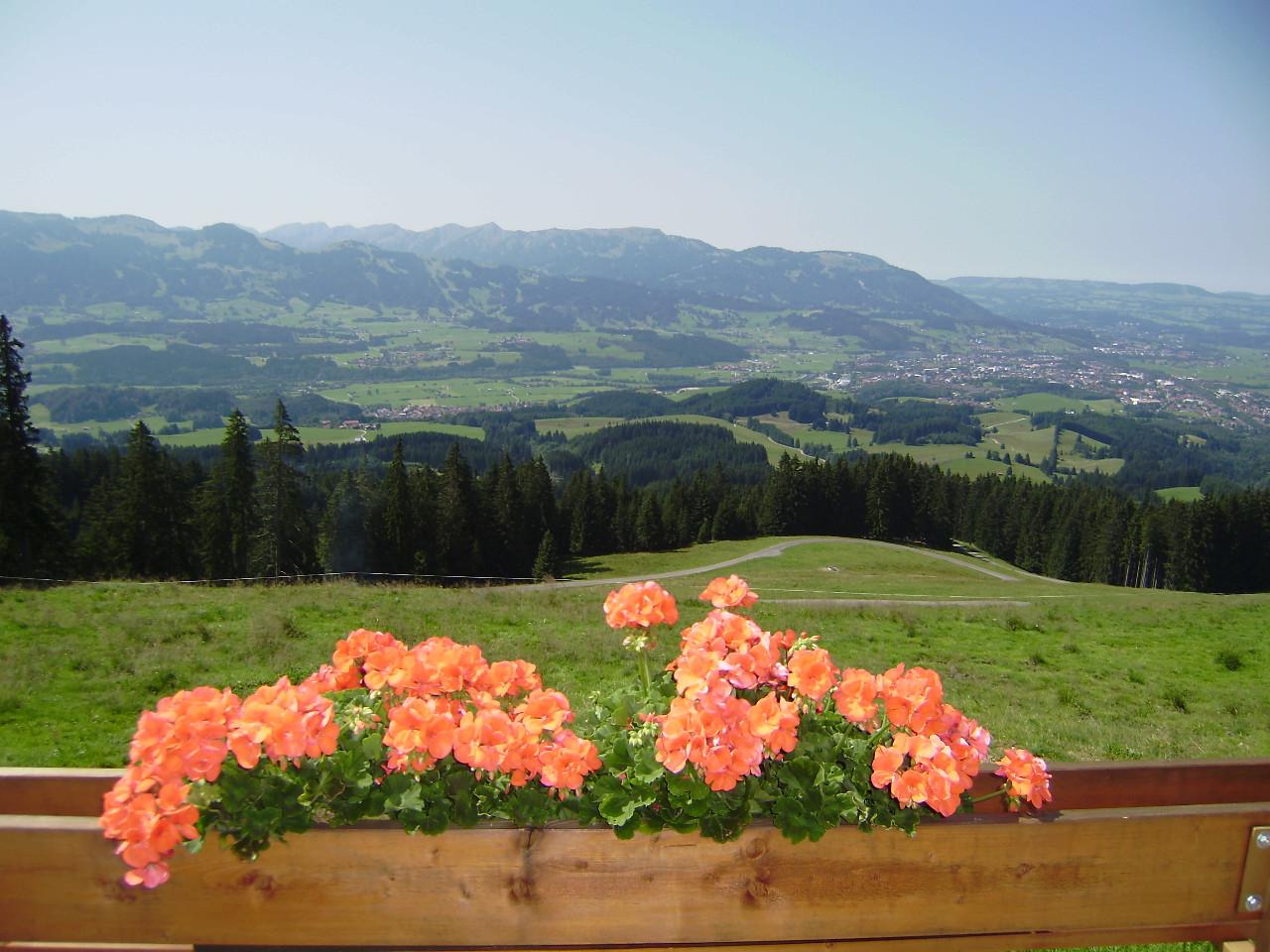 Balkonblumen mit Allgäuer Alpen im Hintergrund | Berggasthof Sonne Imberg in Sonthofen